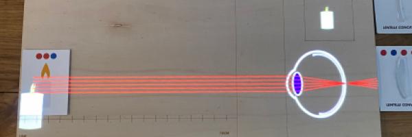 illusion d'optique, table à réalité augmentée, musée Bordeaux